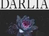 Darlia_petals_FINAL_3